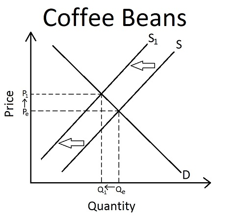 coffee supply and demand Change in supply, demand and pricing of coffee brenda garcia eco/372 june 24, 2013 paul updike supply and demand is an economic model of markets that separates buyers.